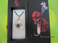 promotion gift child pendant necklace real spider amber pendant 20psc/lot free shipping