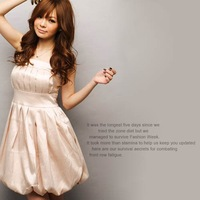 Free Shipping!  2012 New Stand-up Collar Casual Dress Ginger Dress Wholesale and Retail