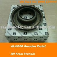 AL4/DP0 DPO Piston231910