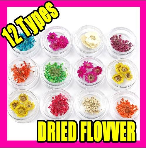 3setsx12 kinds dried flower nail art acrylic decoration(China (Mainland))