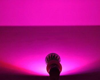 free shipping E27 10W 9 LED Spot Plant Grow Light Red + Blue Sunshine