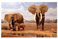 Handicraft Oil Painting on canvas~Elephant Wildlife Guaranteed 100% Free shipping