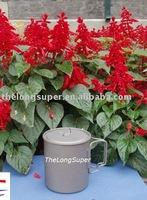 Titanium Outdoors Products--Titanium flatwares--Titanium Mug (750ml,A011)