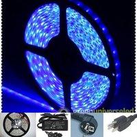 Blue SMD 3528 led stripe,12v  Wateproof IP65 Flexible 300LEDs 5M&24w Power Supply free shipping