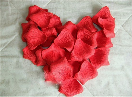 Wholesale! new 1100pcs Red silk rose petals for wedding party 2&quot;X2&quot;(China (Mainland))
