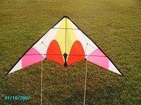Free shipping 180cm fishing rod bone stunt kite
