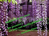 we only sell quality products ------- FM Amanda Chen