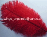 """wholesale 100pcs/lot 8-10"""" Red Ostrich Feather Plume FREE SHIPPING"""