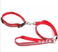 1.5 cm reflective collar neck with traction belt dog chain alloy head never rust