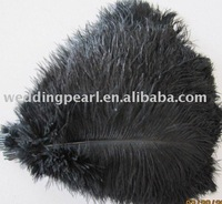 "wholesale FREE SHIPPING 300pcs/lot 8""-10""Ostrich Feather Plume"