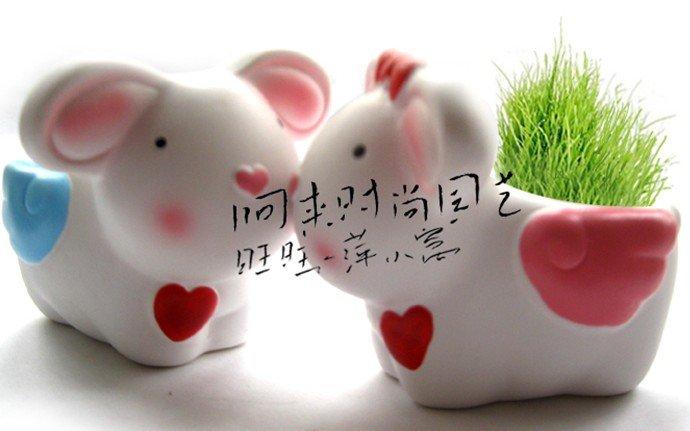 Creative Gift Plant METOO angel rabbit Plant Bonsai Grass Doll Office Mini Fantastic Home Decoration wholesale(China (Mainland))