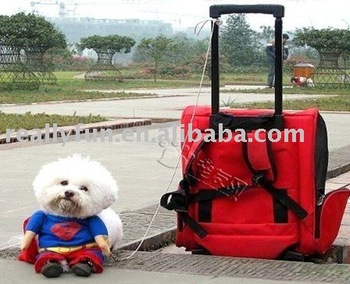 Free shipping cute pet clothes /funny Dog clothes / clothing / Superman dog clothes / dog jacket