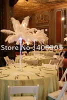 wholesale FREE SHIPPING 300pcs/lot 24-26''Ostrich Feather Plume