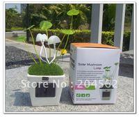 Free shipping 2011 New Design Mini Mushroom LED Lamp/Valentine's day gift