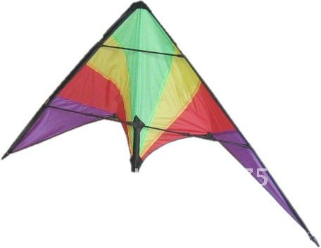 PARADISE DUAL CONTROL SPORT STUNT KITE FUN TO FLY FLYING TOY WHOLESALE(China (Mainland))