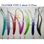 beauty Feather Hair Extensions