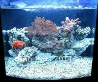 2011 wholesale & factory direct sale 3W power led with 10000-20000K, for aquarium light use, Bridgelux chip