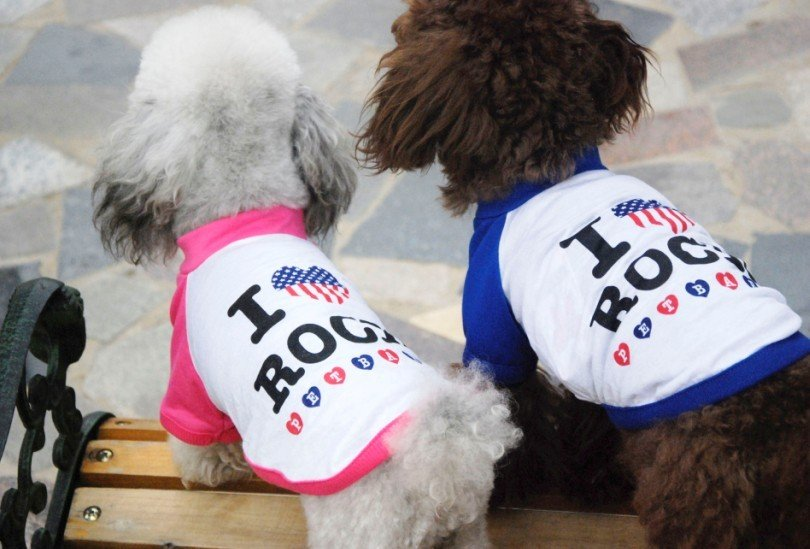 "dog clothes,dog ""I love Rock"" couple costume U.S.A,puppy t shirt,dog t shirt,cat clothes,pet apparel, pet clothing size XS-XXL(China (Mainland))"