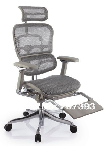 Office Executive Mesh Chair--Ergohuman--pls contact the supplier for the actual price(China (Mainland))