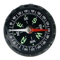 Free shipping,100pcs/lot  plastic liquid exquisite compass,Stylish Fluid-filled Compass