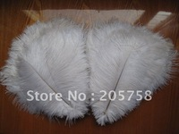 """wholesale 200pcs/lot 10-12"""" Ostrich Feather Plume, any color, FREE SHIPPING"""