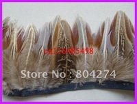 ym75  free shipping  wholesale  pheasant feather   5-10cm