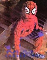 8pcs Free shipping Halloween costumes Gift Spider-Man children size/ supermen Costumes