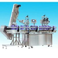 automatic capping equipment for small factory
