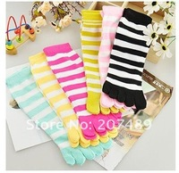 Gift Women candy color socks 5 toes stocking Cute cotton stripe socks separate toes socks wholesale