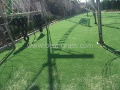 BEST!!! Sports artificial grass(China (Mainland))