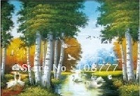 Free shipping/HD 3D stereoscopic paintings / Picture frame /Don't take box/size:25*35/PET-high definition 3D picture2030