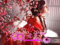 Chinese-style costume hanfu/costume/studio clothing/bright red like the bride take/hot stamping the imperial concubine(China (Mainland))