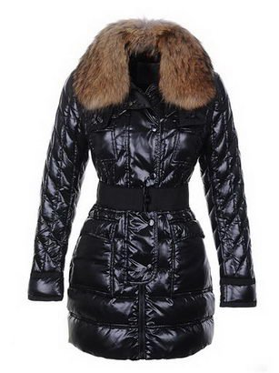 2011 hot sale lady's down jackets,duck's down made,Christmas promotion totally save 70%,2 cocors(China (Mainland))