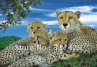Good Quality 25*35cm HD PET Lenticular 3D Picture, 3D lenticular home decoration pictures,Without frame Free Shipping-Leopard