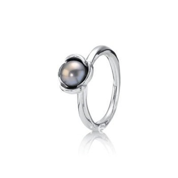 Guaranteed 100% 925 Sterling Silver Rings, Free Shipping, Wholesale Price