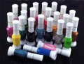Free shipping whosale 24 color 2 way nail art polish with brush & pen varnish