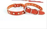 Pure leather printing diamond-studded collar 2cm wide 65g dog / pet collar