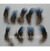 100pcs/lot beautiful wholesale 100% natural peacock Feather peacock plume for wedding accessories FREE SHIPPING