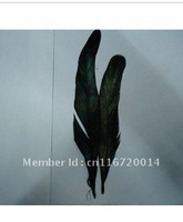 Free shipping!100pcs/lot at less 15cm wholesale 100% natural beautiful cocktail feather for hat decoration