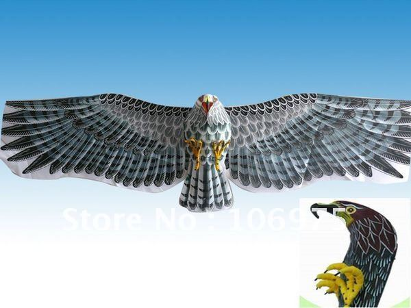 3D Japanese Hawk Falcon Kite Souvenir Collectible Room Home Decoration Chinese Art Deco Crafts(China (Mainland))