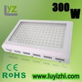 Free shipping + 2 years warranty + hotsale quad  band 300w  led grow light  with 3 watt chip