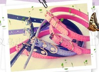 Direct manufacturers, the pet circle, the dog, leather belt, a variety of color, free shipping