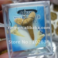 Free shipping! Wholesale lots REAL MACO SHARK TEETH TOOTH WIRED PENDANT FOSSIL SHARK TOOTH PENDANT
