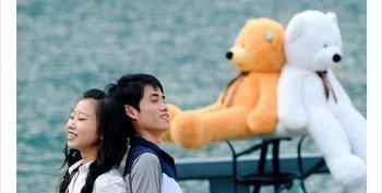 "free shipping  New brand Teddy Bear Stuffed Plush Bear Plush Toys Soft Toys 160CM Brown & white Huge 47"""