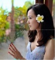 free shipping 500pcs Hawaiian   foam Plumeria Flower hair clip mix color Frangipani
