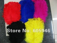 free shipping,stage property dress.wedding sets.feather decoration .feather lace,length 78inch(2m),40g/piece
