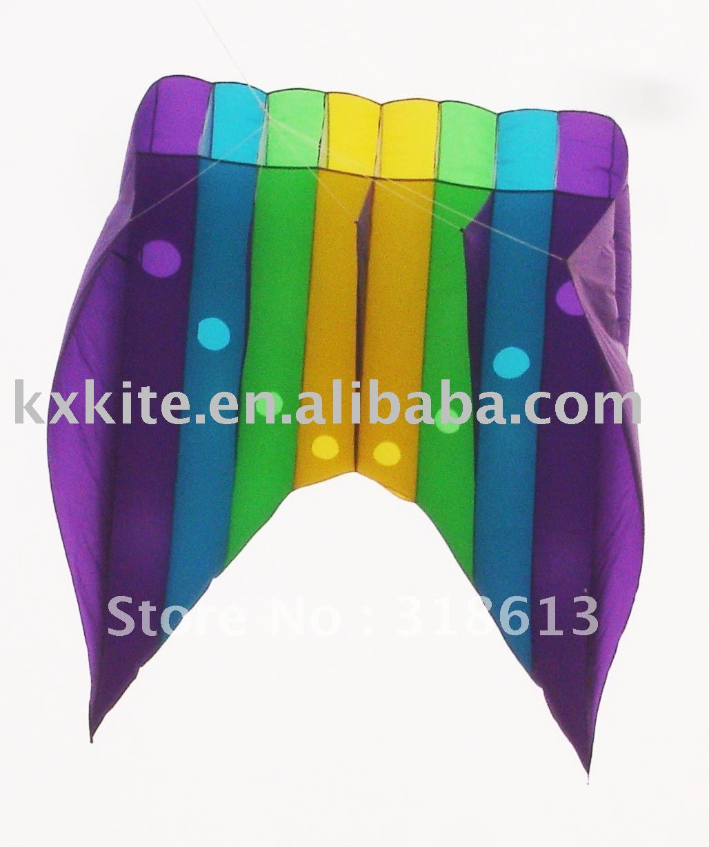 parafoil power kite(China (Mainland))