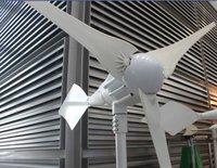 1000W dolphin wind generator,3pcs blades,wind turbine,life span 15year,start wind speed 3m/s,CE ROHS,ISO9001,high quality