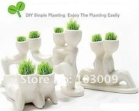 Potted plant x DIY lover double white miniature bonsai grass grass doll series of white people Mini Pot free shipping