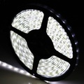Cool White SMD3528 LED Strip 600leds 5M/reel IP65 Waterproof with 5a adapter and 12v dimmer